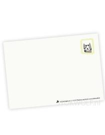 postcard 'Birthday cat'