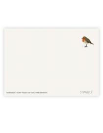 postkaart 'Roodborstje'