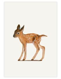 postkaart 'Jong edelhert'