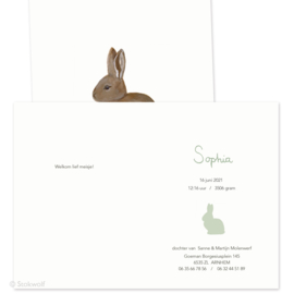geboortekaartje   Jong konijn