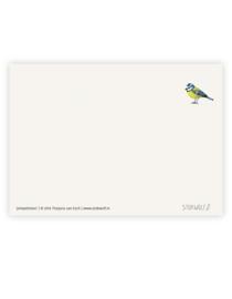 postkaart 'Pimpelmees'