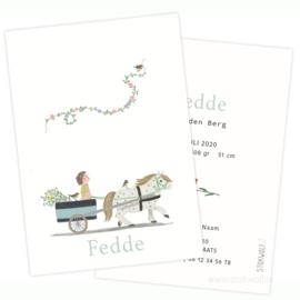 geboortekaartje | Ponyritje met grote zus