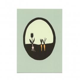 postkaart 'Worteltje en tulp'