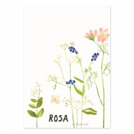 Birth card 'Cosmea'