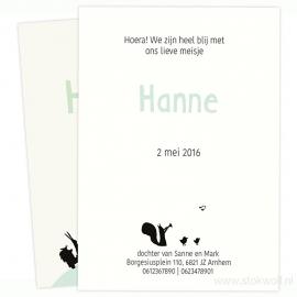proefkaart | Karavaan (crème-mint, enkel)