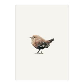 postkaart 'Winterkoninkje'