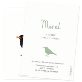 geboortekaartje   Merel