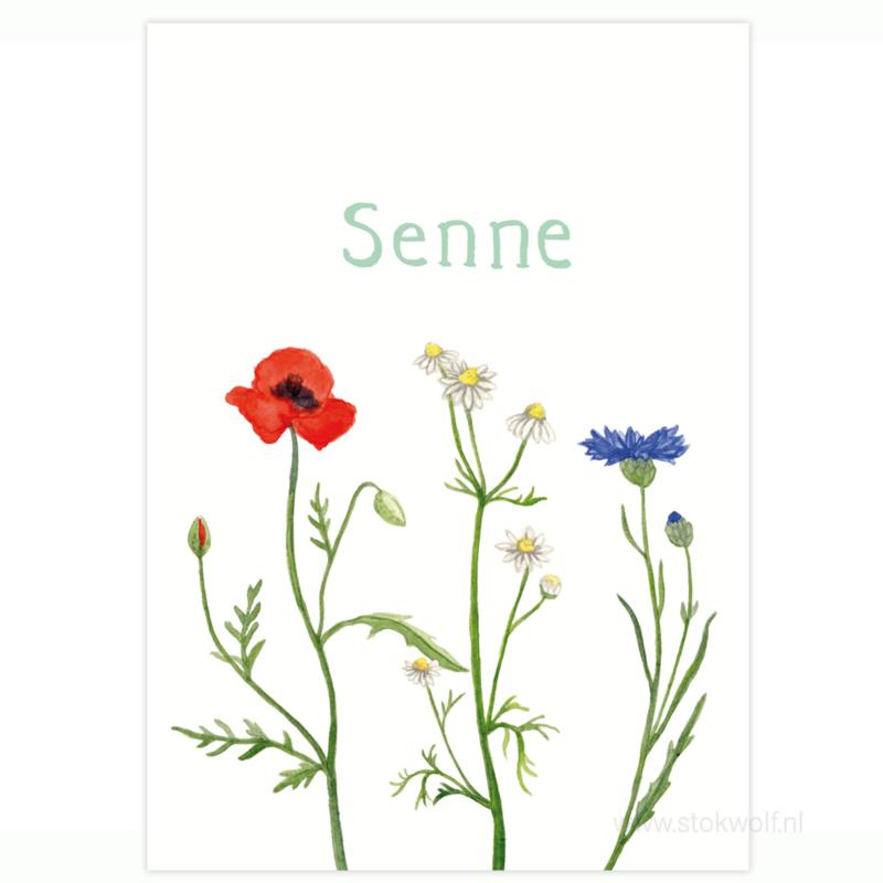 proefkaart | Wilde bloemen rood (gevouwen)
