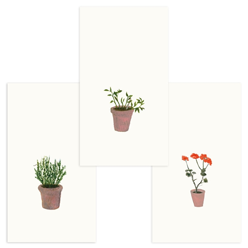Set of giftcards | flowerpot