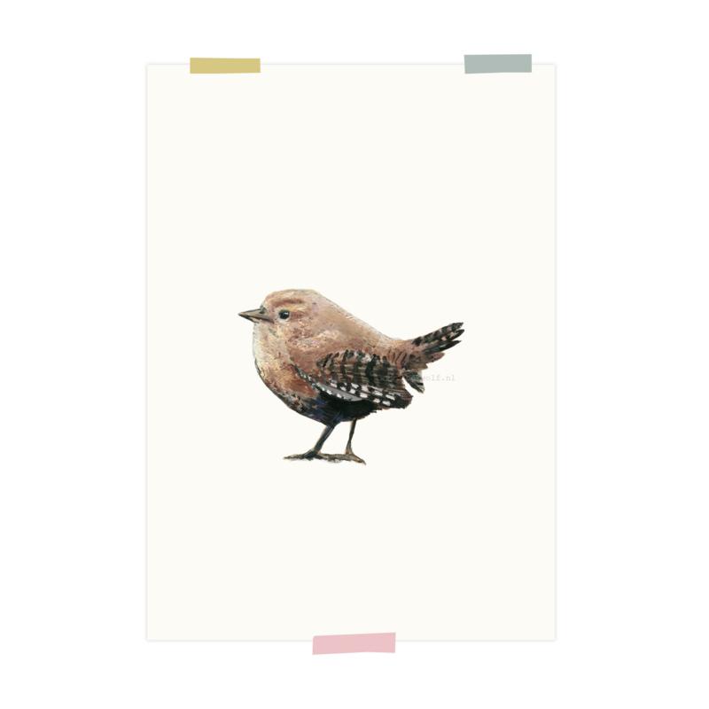 print | Winterkoninkje