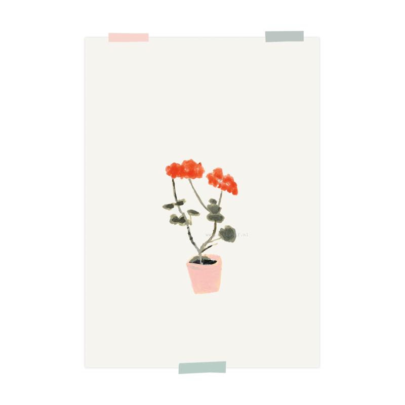 print | Geranium