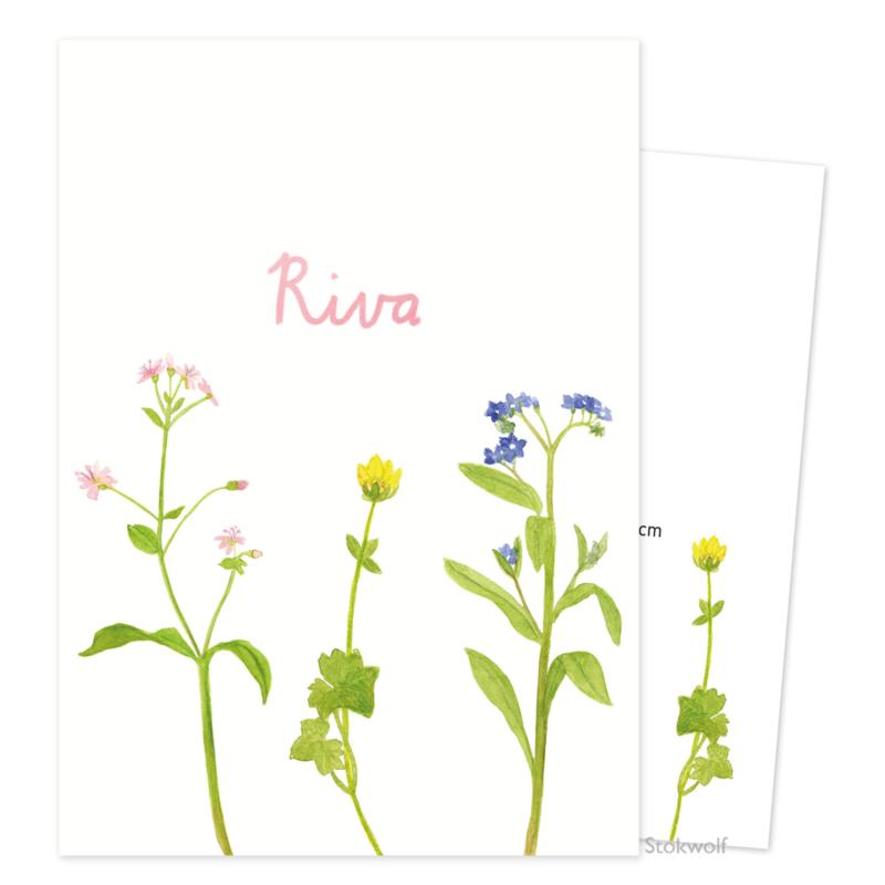 Proefkaart 'Veldbloemen' (gevouwen)