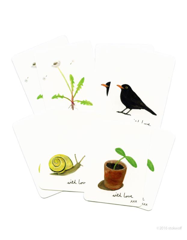 mini cards | Garden (set)