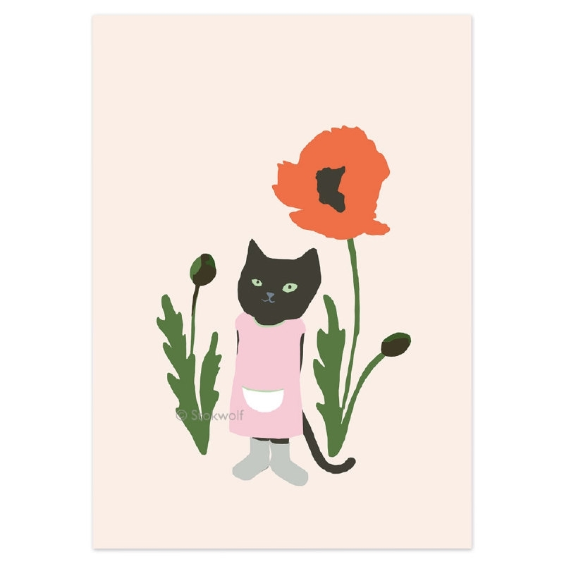 Pussy cat and poppy