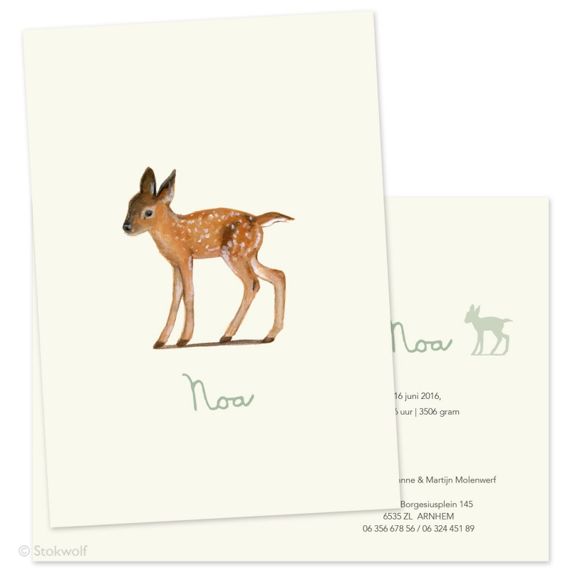 Birth card 'Young deer'