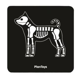 Plan Toys dierenarts dokterssetje