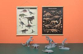 Praatplaat Dinosauriers
