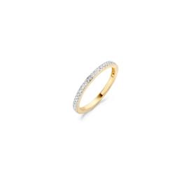 Blush Ring 1119BZI - Geel en Wit goud met zirkonia