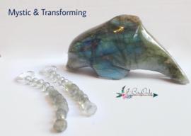 Mystic & Transforming | silver plated Oorbellen Labradoriet