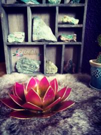 Lotus waxinelicht groen|roze