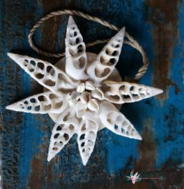 Schelpenhanger mandala White