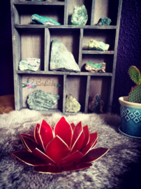 Lotus Waxinelicht Rood groei naar verlichting