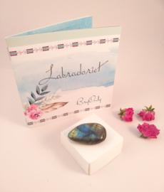Labradoriet  met Interactief boekje: De Vlinder