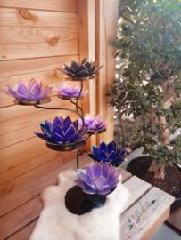 Purple Gaze Lotus Boom  7 capiz waxinelicht houders