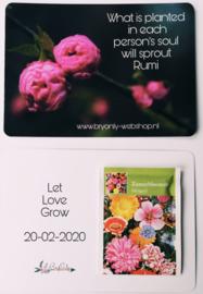 Wilde bloemen zaadjes kaart