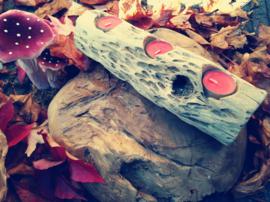 Mangrove romp & 3 waxinelichtjes