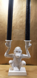 White Monkey | 2 hands