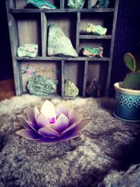 Lotus waxinelicht Violet
