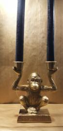 Golden Monkey | 2 hands