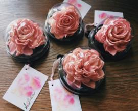 Sola Lotus Rose | Bedankje