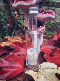 Wish Bottle In Good Spirits