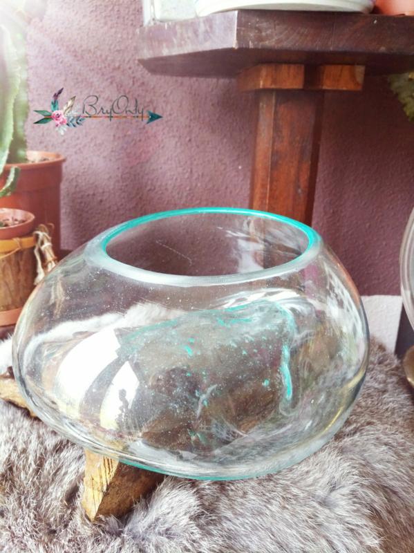 Glazen Kom op Drijfhout 4