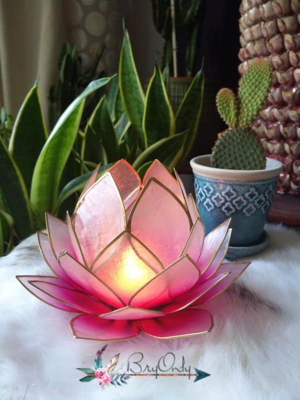 Lotus Waxinelicht roze|Licht roze groot