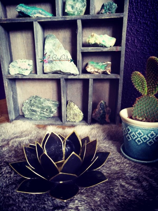 Lotus Waxine licht zwart