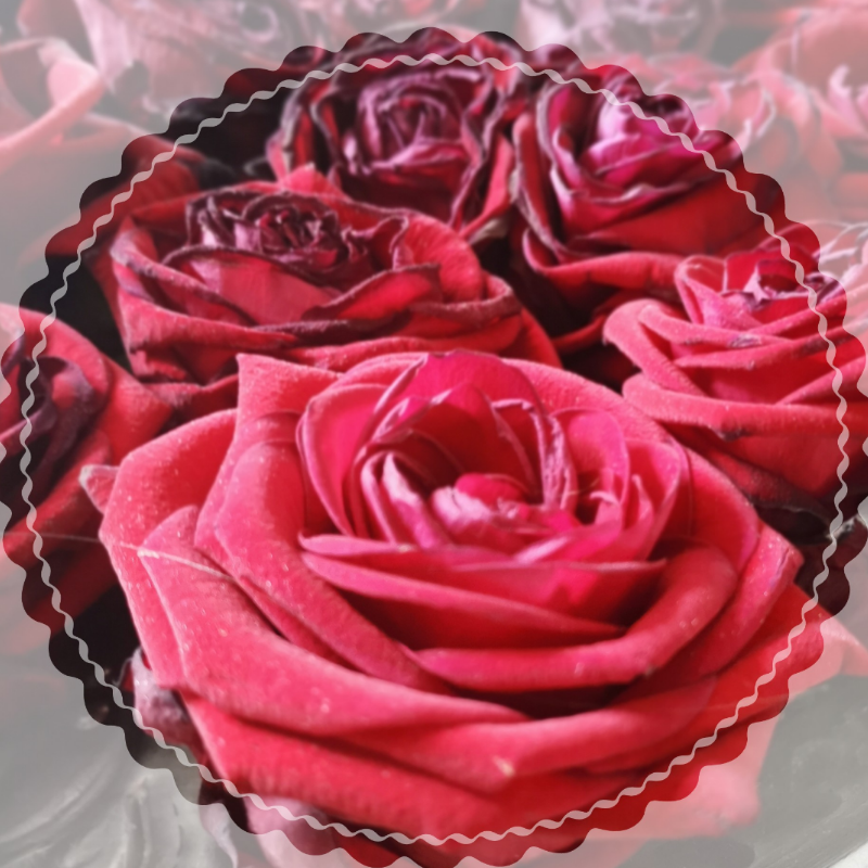 Valentijndag