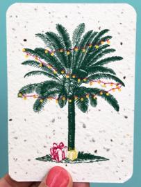 Palm & Presents - A7