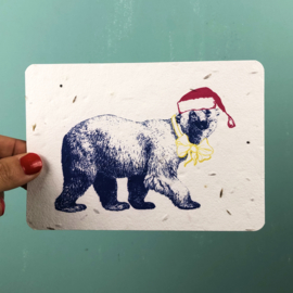 Growing card Winter Bear + envelope