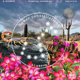 Flower Constellations - Schorpioen (24/10 - 22/11)