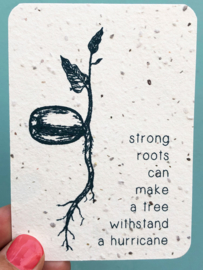 Strong roots - A7