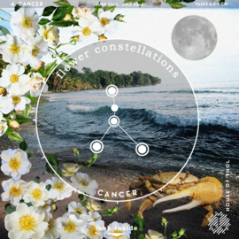 Flower Constellations - Kreeft (22/6 - 22/7)