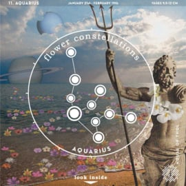 Flower Constellations - Aquarius (22/01 - 19/02)