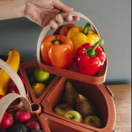 Patera Magna | fruit/veg bowl XL - made to order