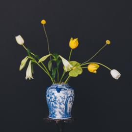 Flower Constellations - full Zodiac