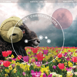Flower Constellations - Aries (21/3 - 20/4)
