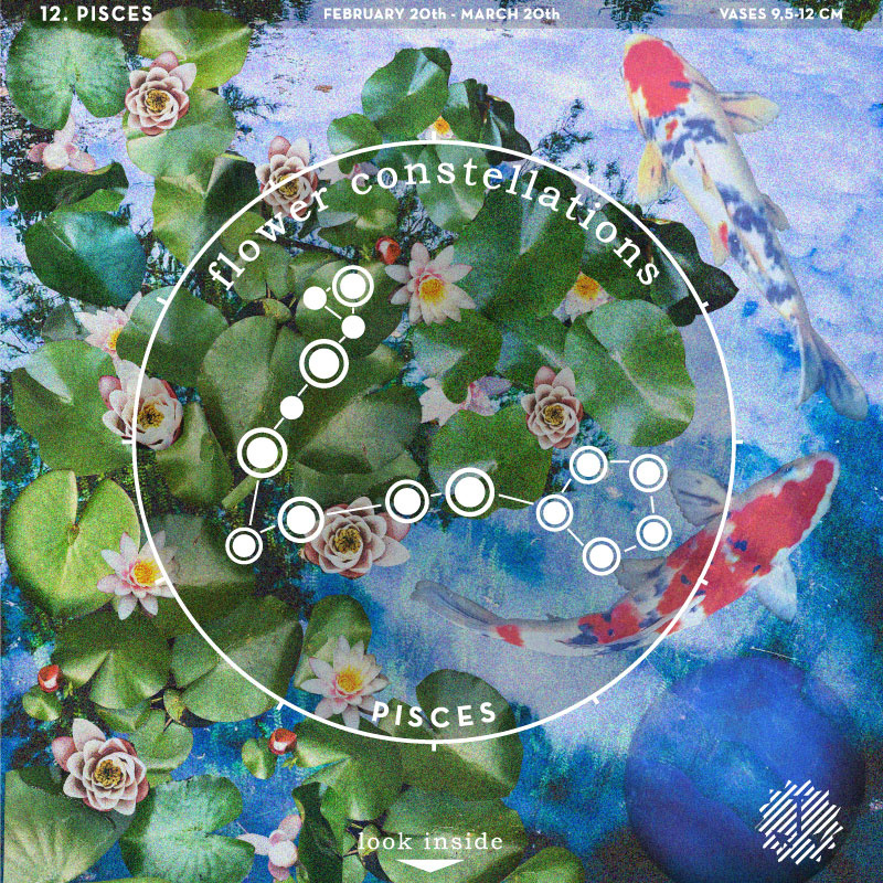 Flower Constellations - Vissen (20/02  - 20/03)