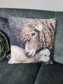 Prachtig kussen met schapen